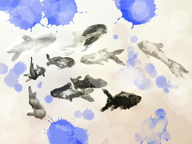 Bild zu: Ein Fisch zum Grillen, vier zum Begaffen