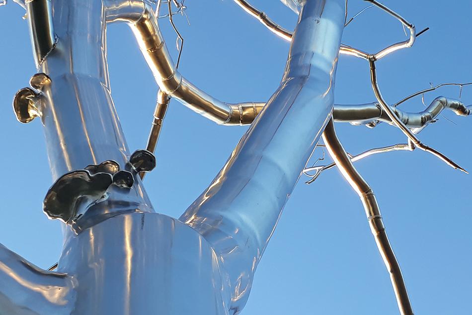 Bild einer Baumskulptur, Art Museum, St. Louis. Foto: Monika Rinck