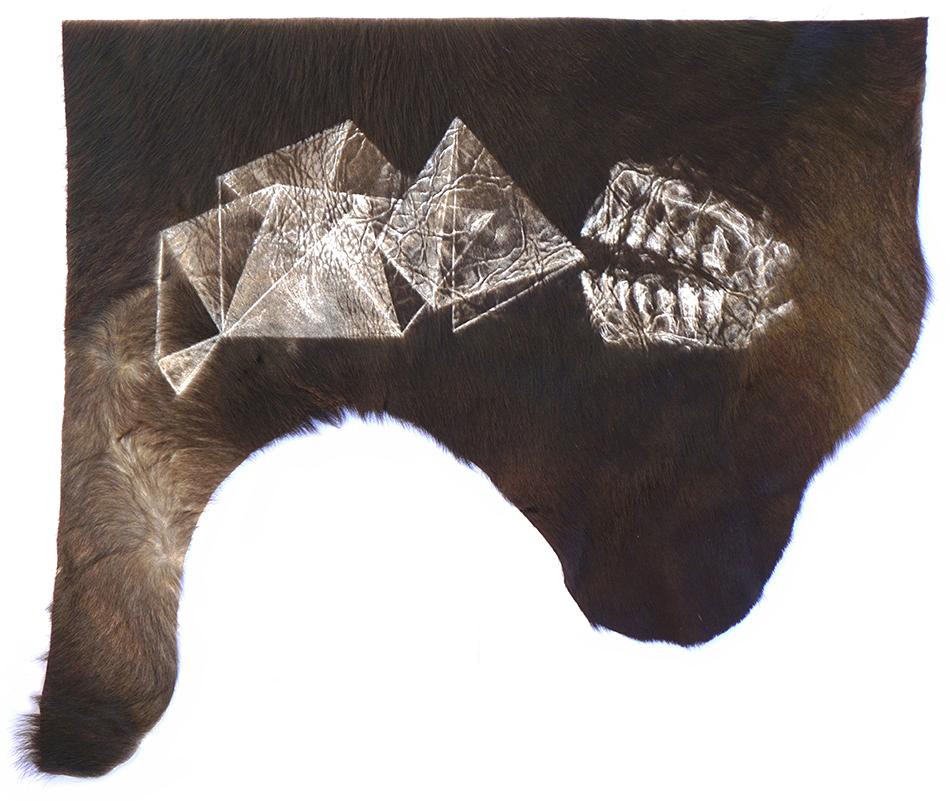 Bild für Weiter Schreiben, Zähne im Kuhfell © Fadi Alhamwi